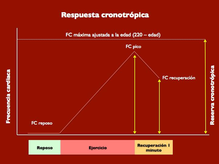 Figura 3. Respuesta cronotrópica